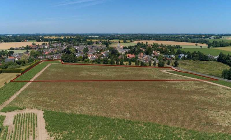 Land Commercial for sale in 3ha Development Land at Great Ellingham, Norfolk