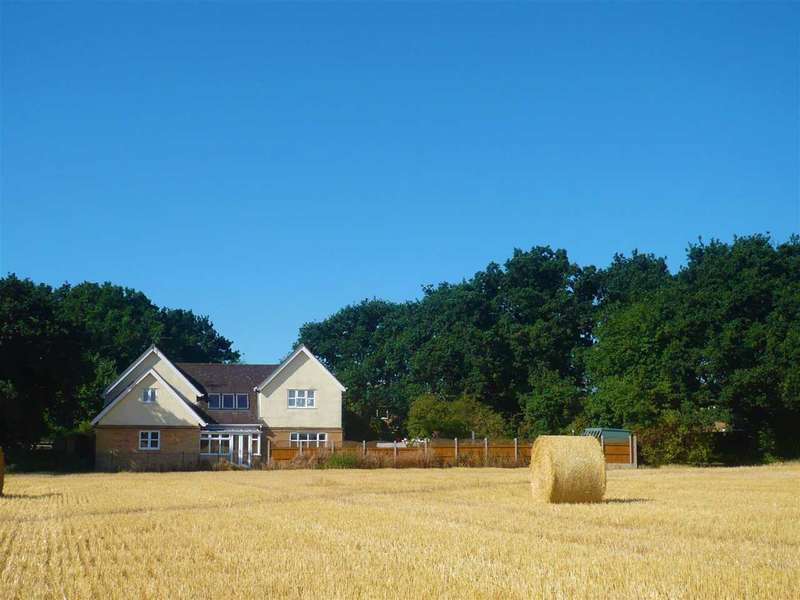 4 Bedrooms Detached House for sale in Green Lane, Colchester