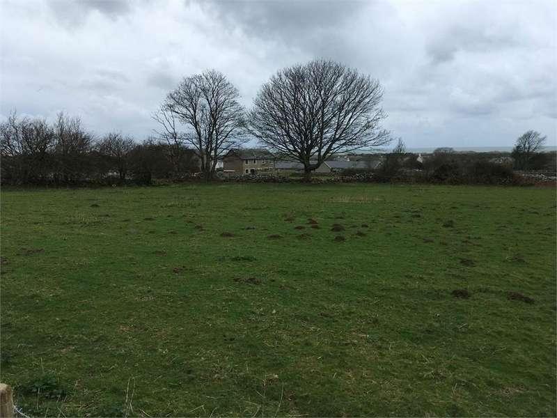 Land Commercial for sale in Pentre Uchaf Estate Grazing Land, Dyffryn Ardudwy, Gwynedd