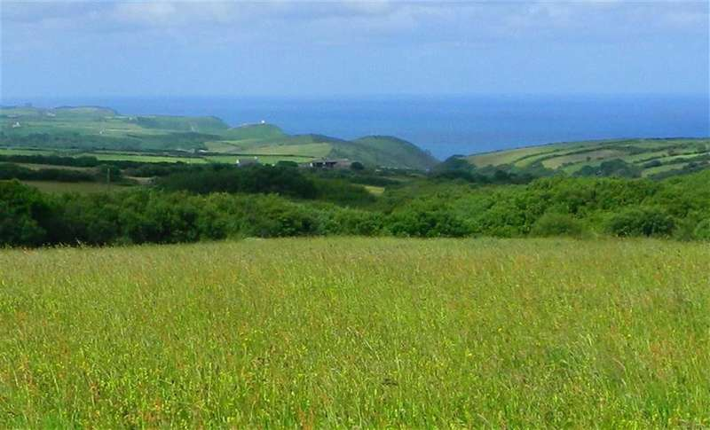 Land Commercial for sale in St Juliot, Boscastle, Cornwall, PL35