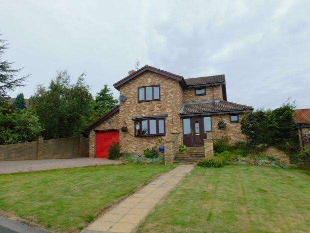 4 Bedrooms Detached House for sale in LAMBTON COURT, PETERLEE, OAKERSIDE, PETERLEE