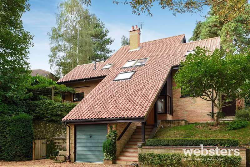 4 Bedrooms Detached House for sale in Wellesley Avenue South, Norwich NR1