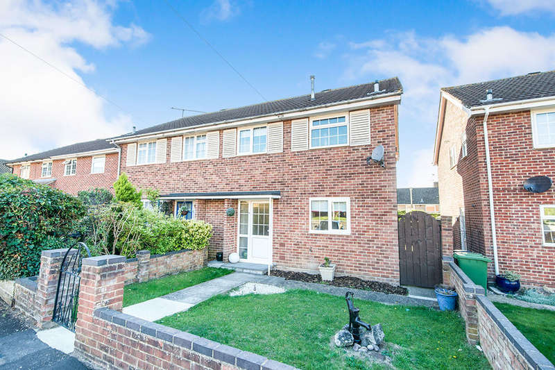 3 Bedrooms Semi Detached House for sale in Midlane Close, Basingstoke, RG21