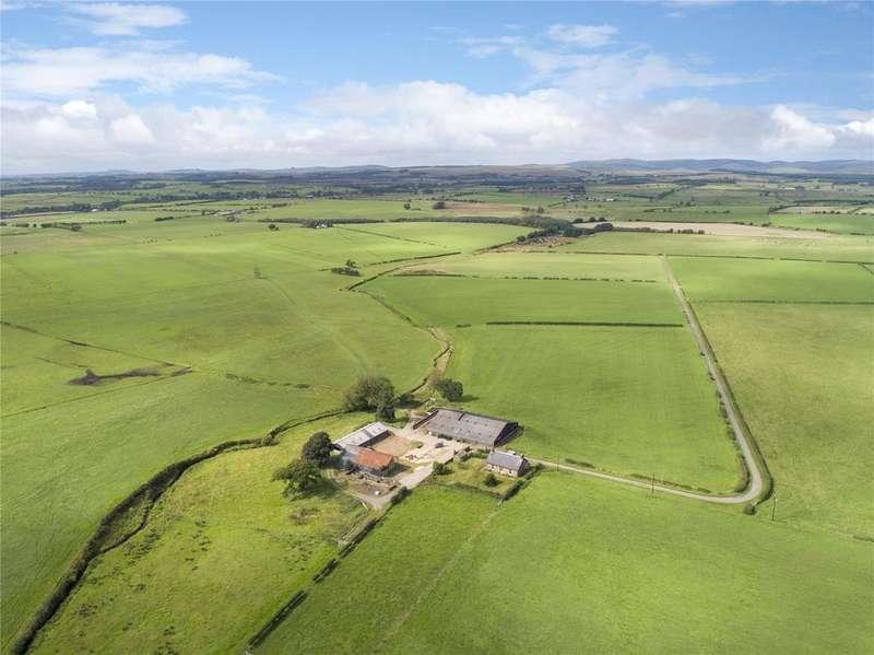 Farm Commercial for sale in The Evertown Portfolio - Lot 16, Greenknowe Farm, Canonbie, Dumfriesshire, DG14