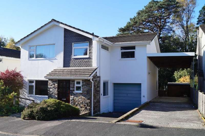 5 Bedrooms Detached House for sale in Whitchurch, Tavistock