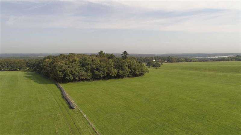 3 Bedrooms Land Commercial for sale in Haslemere Road, Brook, Surrey, GU8