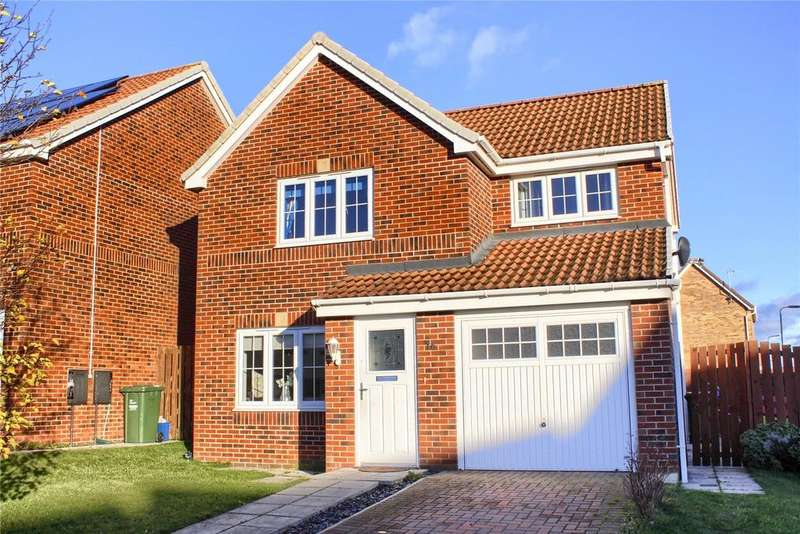 3 Bedrooms Detached House for sale in Darwin Close, Meadow Rise