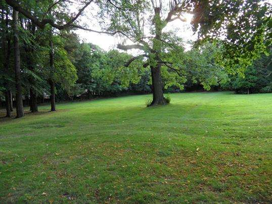 Land Commercial for sale in Land at Somerlees, Lane Head Road, Cawthorne, Barnsley, S75 4AA