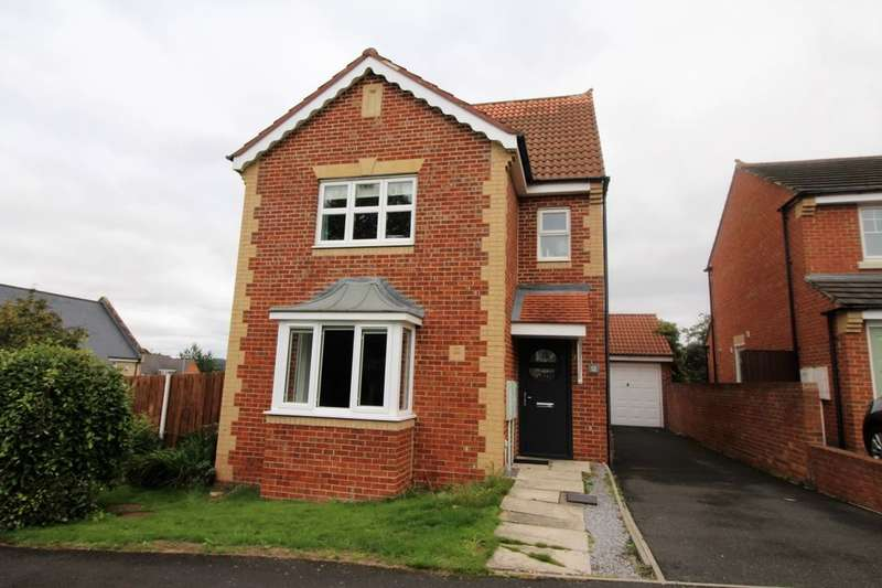 4 Bedrooms Detached House for sale in Farm Well Place, Prudhoe, NE42