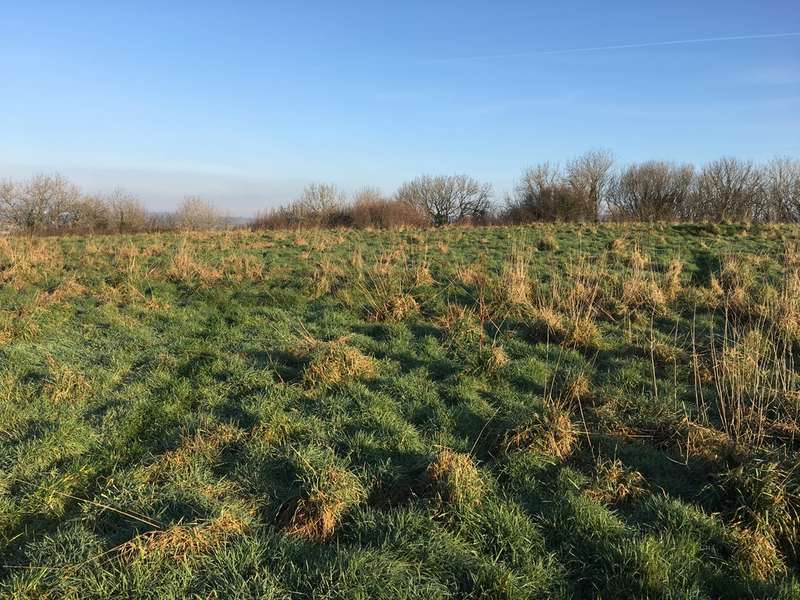 Land Commercial for sale in Land Near Plympton