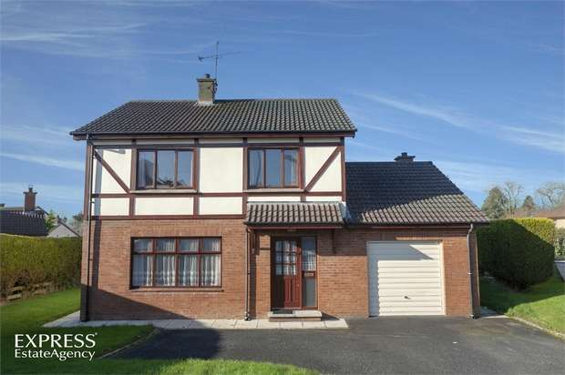3 Bedrooms Detached House for sale in Forthill Rise, Cookstown, County Tyrone