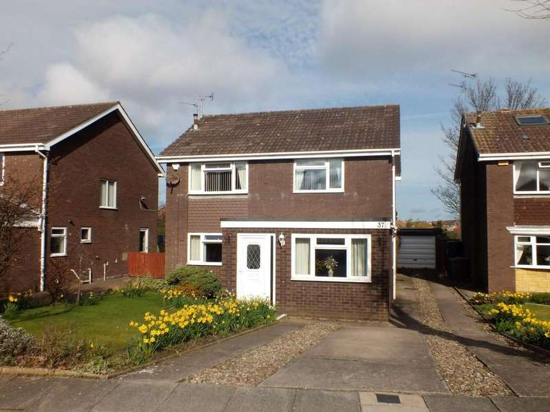 4 Bedrooms Detached House for sale in Herring Gull Close, Blyth