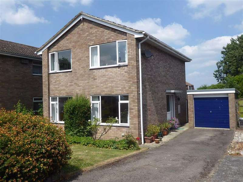 4 Bedrooms Detached House for sale in The Close, Coaley, GL11