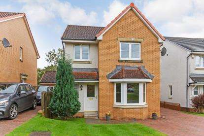 4 Bedrooms Detached House for sale in Virginia Grove, Hamilton