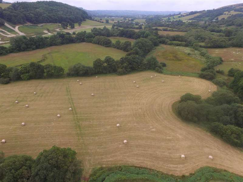 Land Commercial for sale in Bwlchllan, Lampeter