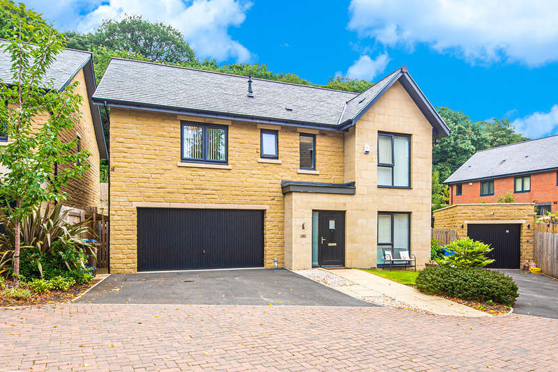5 Bedrooms Detached House for sale in Hastings Road, Millhouses