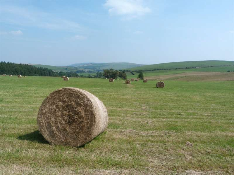 Land Commercial for sale in Springhill, Newcastle On Clun, Craven Arms, SY7 8PE