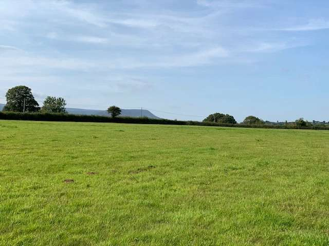 Equestrian Facility Character Property for sale in Land At Trelandon, Longtown, Herefordshire, HR2 0LU