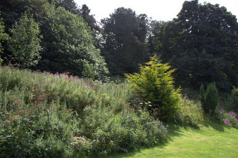 Land Commercial for sale in Springfield Meadow, Alnwick, Northumberland, NE66