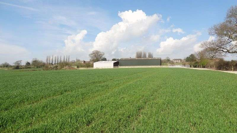Land Commercial for sale in Stone Road, Bramshall