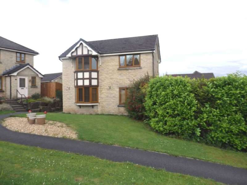 3 Bedrooms Detached House for sale in Drysdale View, Astley Bridge
