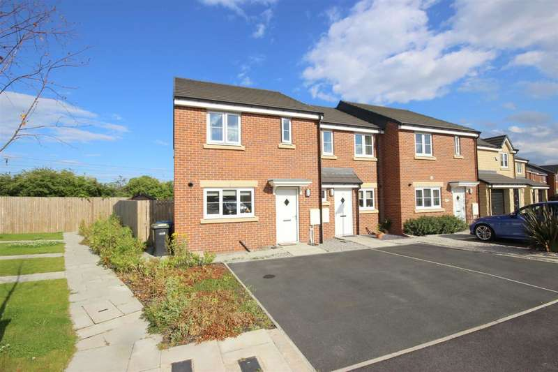 3 Bedrooms Property for sale in Holliday Close, Langley Moor