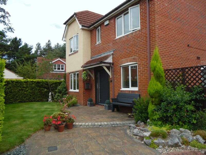 4 Bedrooms Detached House for sale in Delton Close, Washington