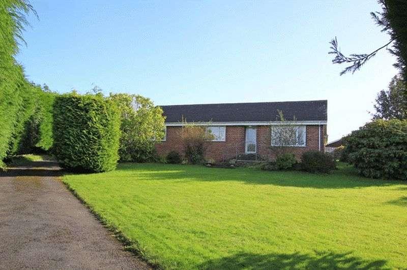 4 Bedrooms Detached Bungalow for sale in School Road, Carmarthen