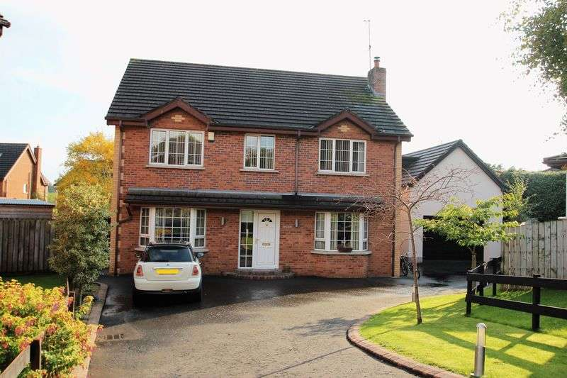 6 Bedrooms Detached House for sale in 11 Drumnacanvy Lodge, Portadown