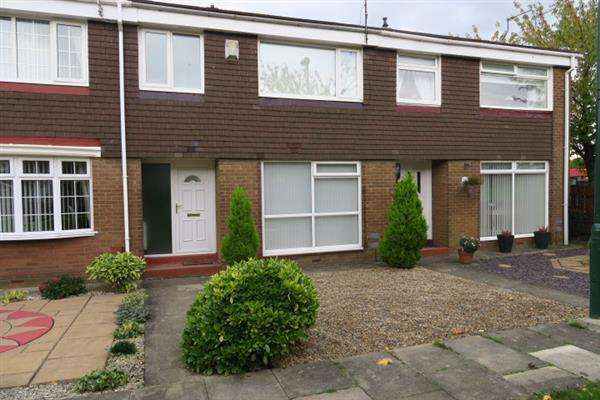 3 Bedrooms Terraced House for sale in Durham Drive, Jarrow