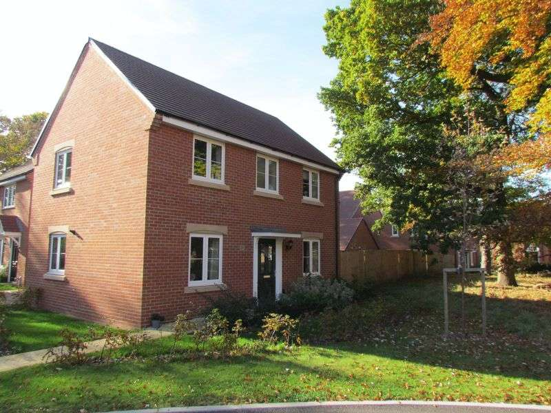3 Bedrooms Detached House for sale in Nathaniel Close, Southampton