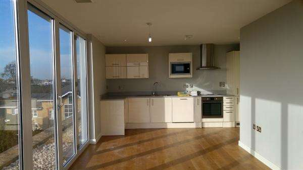 2 Bedrooms Apartment Flat for sale in Millbrooke Penthouse, Keswick Road, East Putney