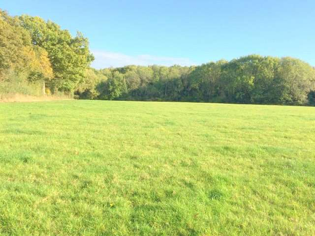 Land Commercial for sale in Plaistow, West Sussex