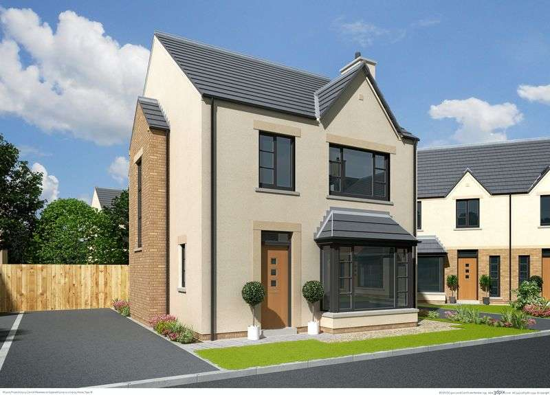 3 Bedrooms Detached House for sale in The BRYONY