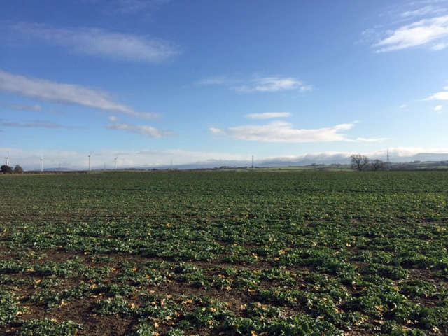 Land Commercial for sale in 149.19 Acres Land, Hilton, Yarm, TS15 9LB