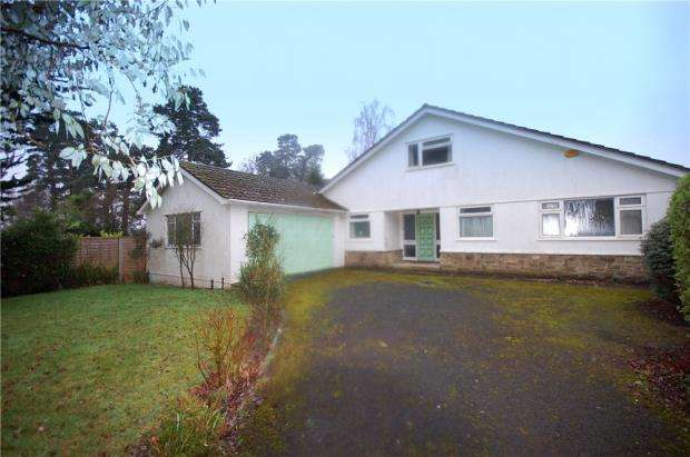 4 Bedrooms Detached Bungalow for sale in Ferndown, Dorset, BH22