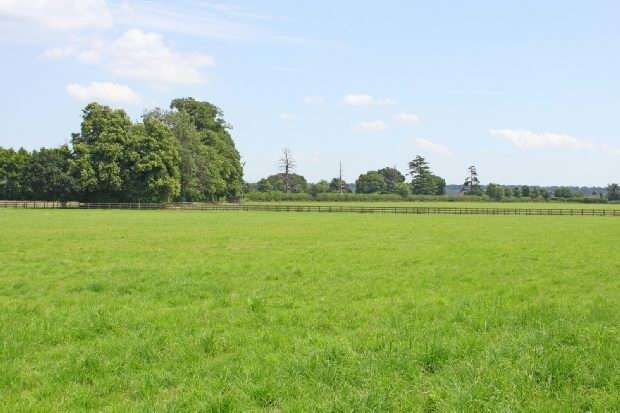 Land Commercial for sale in Tinkers Cross, Fordingbridge