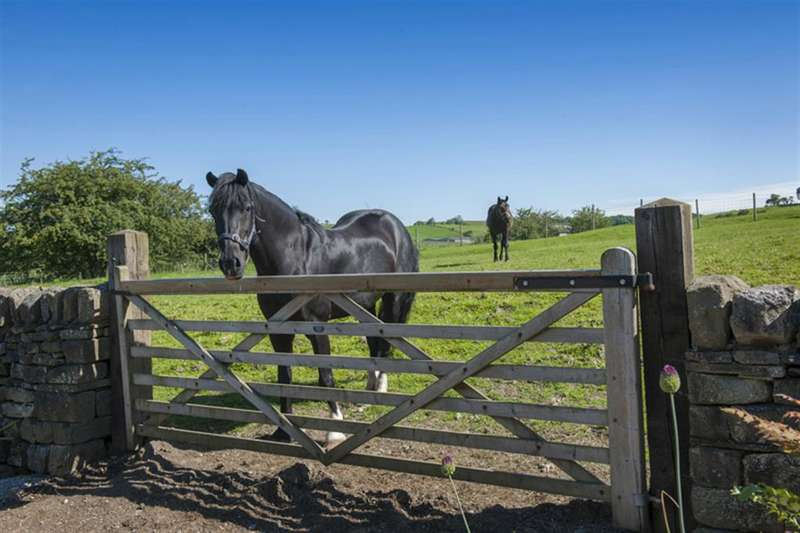 6 Bedrooms Equestrian Facility Character Property for sale in Stock Green Farm, Bracewell, Skipton