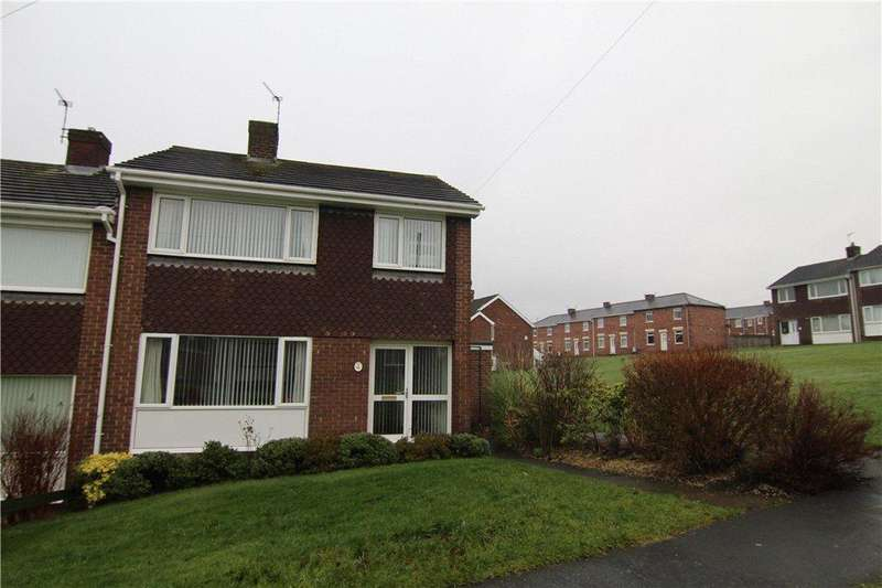 3 Bedrooms Semi Detached House for sale in Delaval, Chester-Le-Street, DH2