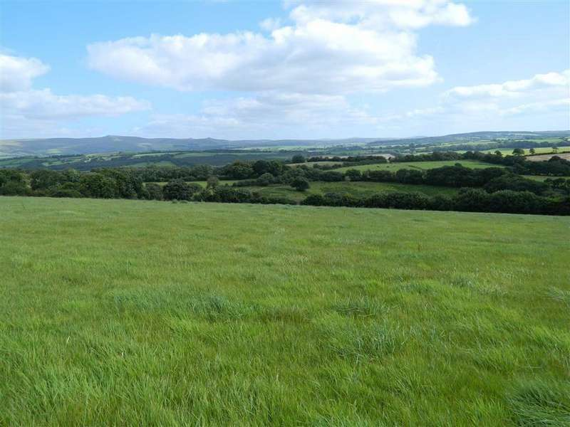 Land Commercial for sale in Bratton Clovelly, Okehampton, Devon, EX20