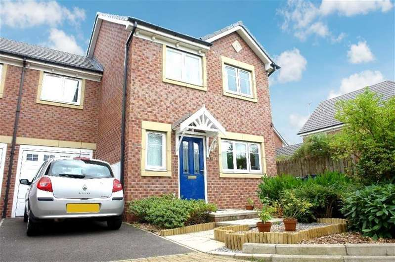 3 Bedrooms Semi Detached House for sale in Manor Park, Newcastle Upon Tyne, NE7