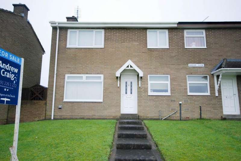 2 Bedrooms Semi Detached House for sale in Badger Close, Hall Farm