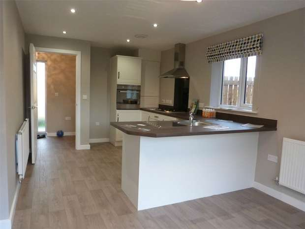 3 Bedrooms Detached House for sale in *Plot - 47 Cuthbert - SOUTH FACING GARDEN*, Eden Field, Newton Aycliffe, Durham
