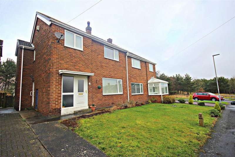 3 Bedrooms Semi Detached House for sale in Beechwoods, Chester Le Street