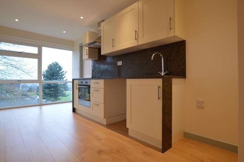 1 Bedroom Flat for sale in Menlo Gardens London SE19