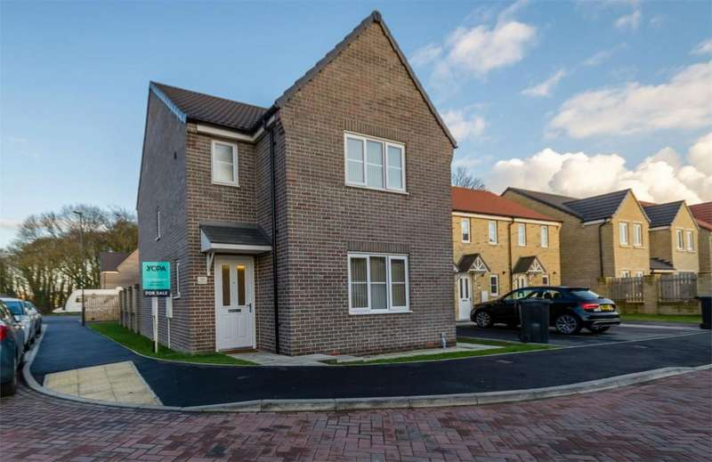 3 Bedrooms Detached House for sale in Blackthorn Close, SELBY, North Yorkshire