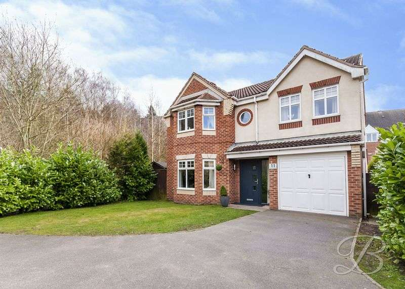 4 Bedrooms Detached House for sale in Quartz Avenue, Mansfield