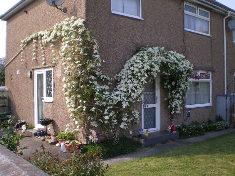 3 Bedrooms Semi Detached House for sale in Russell Terrace, Carmarthen, Carmarthenshire, SA31