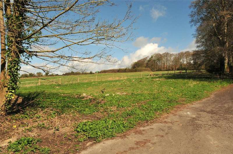 Land Commercial for sale in Charlton Down, Dorchester, Dorset