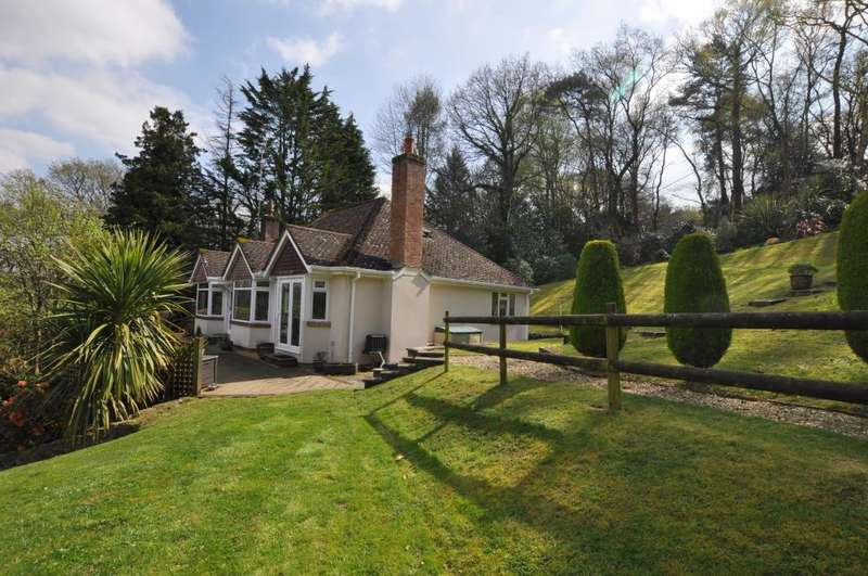 4 Bedrooms Detached Bungalow for sale in NEW FOREST, Ringwood, BH24 3HX